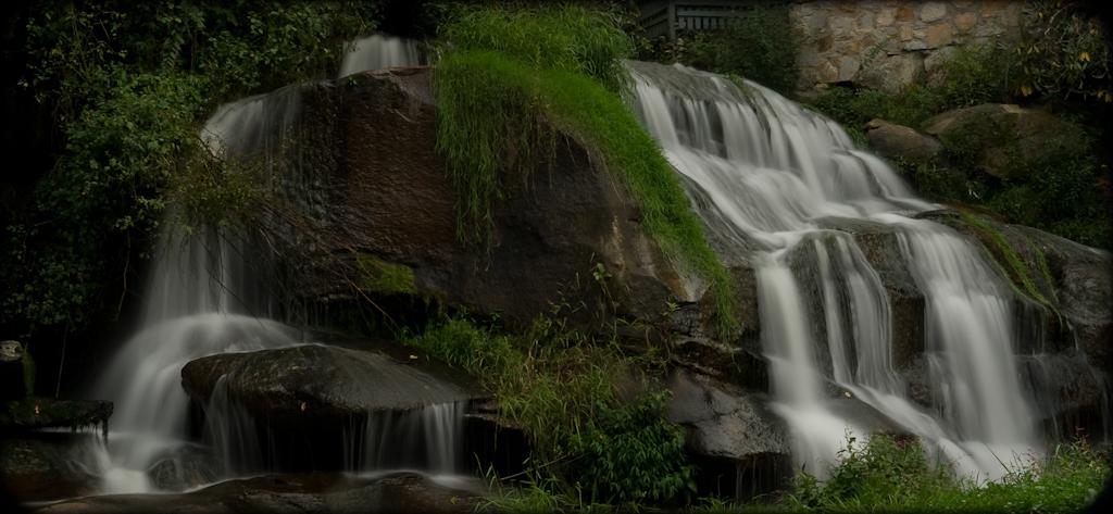 Web Site Pics landscape_-10