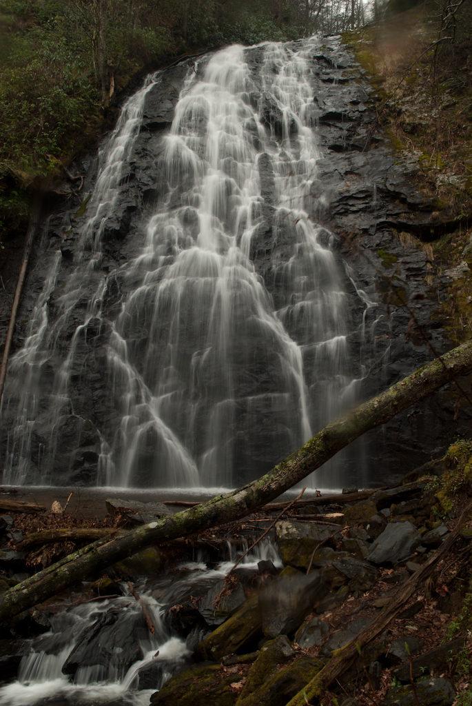 Web Site Pics landscape_-26