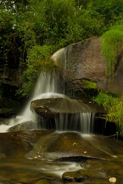 Web Site Pics landscape_-9