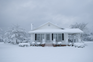This image was taken after a snow storm in Wallace North Carolina
